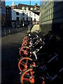 NZ2463 : Bikes for hire, Malborough Crescent by Andrew Curtis
