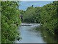 SK3635 : The River Derwent in Derby by Mat Fascione