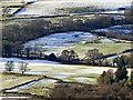 NS4185 : Fields near Tullochan by Thomas Nugent