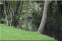 TQ2866 : River Wandle by N Chadwick