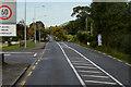 H1595 : Stranorlar, Letterkenny Road by David Dixon
