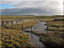 SD8965 : Malham Water, looking downstream by Stephen Craven