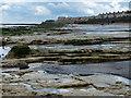 NZ5234 : Parton Rocks on the Hartlepool shoreline by Mat Fascione