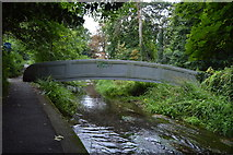 TQ2865 : Footbridge , River Wandle by N Chadwick