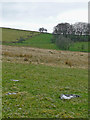 SN7057 : Hill pasture south-east of Tregaron in Ceredigion by Roger  Kidd