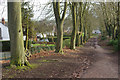 SP0073 : Lickey Hills Country Park by Stephen McKay