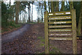 SO9974 : Lickey Hills Country Park by Stephen McKay