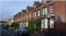 SE2733 : Brentwood Terrace, Armley, Leeds by Mark Stevenson