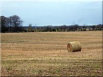 NJ0459 : Bale in a harvested field by John Lucas