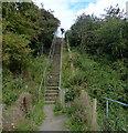 NZ4738 : Steps along the England Coast Path by Mat Fascione