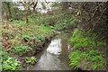 SX4254 : Normal tidal limit on stream, Torpoint by Derek Harper