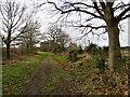TM2642 : Newbourne: on Lower House Lane by John Sutton