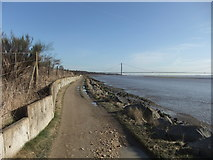 TA0025 : Eastward on the Humber Foreshore by David Brown