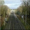 SJ8964 : From Peover Lane Bridge by Alan Murray-Rust