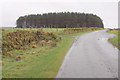 SX1383 : Wood near Crowdy Reservoir by Derek Harper