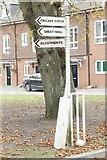 SU5985 : Artwork by the tree by Bill Nicholls