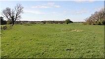SE3766 : Ridge and furrow field system by Alan Walker