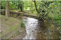 TQ2864 : River Wandle, The Grove by N Chadwick