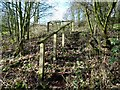SK2331 : Footpath steps to Hoon Lane (south) by Ian Calderwood