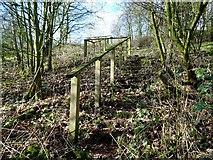 SK2331 : Footpath steps to Hoon Lane (south) by Ian Calderwood
