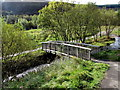 SS9792 : Wooden bridge over a stream in Clydach Vale Country Park by Jaggery