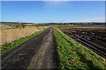 SE9914 : Carr Lane towards Bonby by Ian S