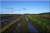 SE9914 : Farm track on Bonby Carrs by Ian S