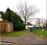ST3090 : Evergreen and deciduous in Malpas, Newport by Jaggery