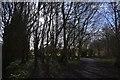 ST0207 : Cullompton : Cullompton Community Association Fields by Lewis Clarke