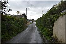 SX4160 : Lane through Carkeel by N Chadwick