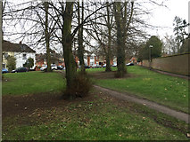 TM0458 : Open space with lime trees by Marriotts Walk, Stowmarket by Robin Stott