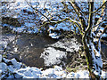 NY9039 : Ice pancake in Middlehope Burn by Trevor Littlewood