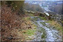 SE2134 : Owlcotes Lane, Pudsey, Leeds by Mark Stevenson