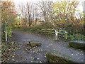 SE3231 : Transpennine Trail leaves Thwaite Lane by Stephen Craven