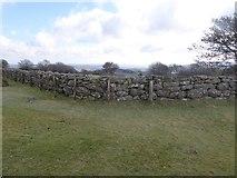 SX7382 : The edge of farmland, Easdon Tor by David Smith