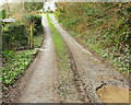 SX0273 : Footpath past Rocksea Mill Cottage by Derek Harper