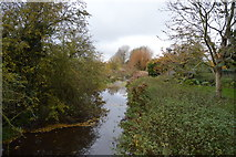TL5050 : River Granta (Cam) by N Chadwick