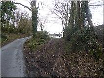 SX7383 : Track to a field gate, near Yarde by David Smith