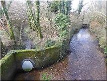 SX7383 : Leats at Bovey Bridge by David Smith