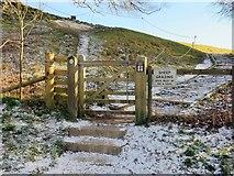 SU1070 : Gate into the henge at Avebury by Steve Daniels