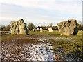 SU1069 : Standing stones in Avebury by Steve Daniels
