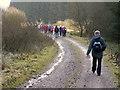 H4839 : First Omagh Church Walking Group, Cornarooslan by Kenneth  Allen