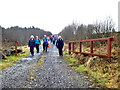 H5041 : First Omagh Church Walking Group, Jenkin Forest by Kenneth  Allen