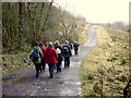 H4941 : First Omagh Church Walking Group, Jenkin Forest by Kenneth  Allen
