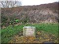 SE3530 : Milestone: Methley 3 miles by Stephen Craven