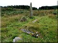 NR5166 : Carragh a'Ghlinne stone row by Sandy Gerrard