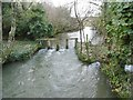 SY8093 : Affpuddle, river & weir by Mike Faherty
