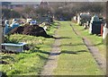 TM1615 : Allotments near Alton Park Road, Clacton by Duncan Graham