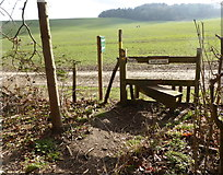 TR0149 : Stile, churchyard of St. Cosmas & St. Damian, Challock by pam fray