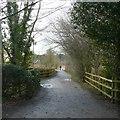 SK4032 : Bridleway near the kennels, Elvaston Castle by Alan Murray-Rust